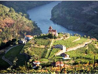 Overlooking Portugal's Douro River
