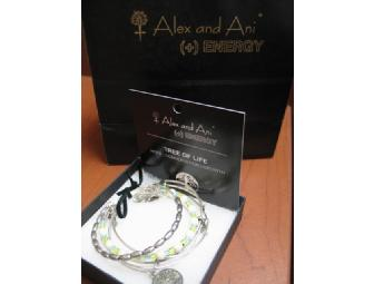 Alex and Ani Five Bangle Set in Russian Silver