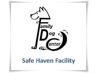 Family Dog Center Training Session
