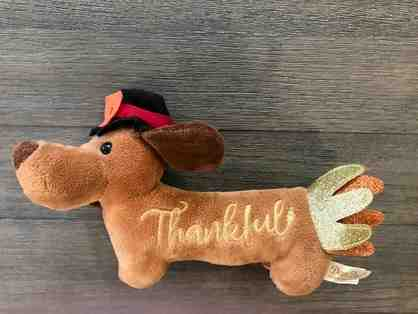 Thanksgiving dachshund toy