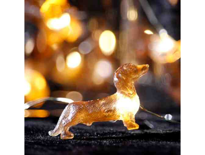 Dachshund string lights