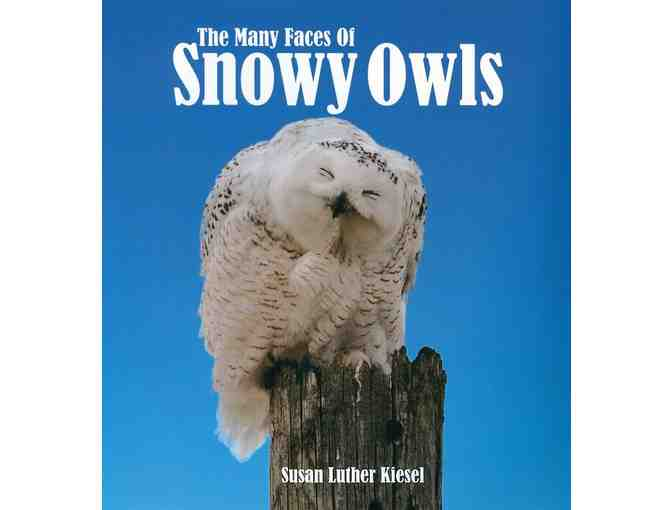 Susan Luther Kiesel signed book about Snowy Owls