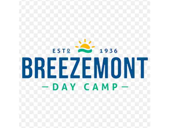 Breezemont Day Camp - Photo 1