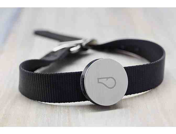 Whistle Activity Monitor For Dogs