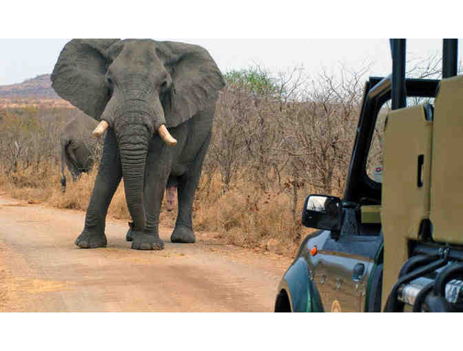 Game Drives, 7-Night Adventure in Cape Town & Private Game Reserve for 2 - Photo 5