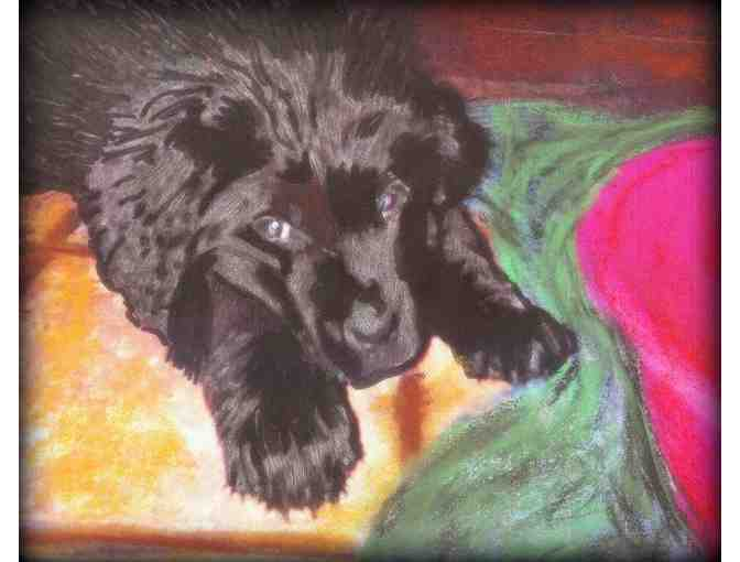 '#1''#1' FOR PET LOVERS ONLY!: Commission a Special 1/kind Portrait here!