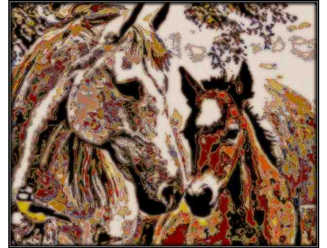 'HER LITTLE COLT' by WBK: *** 9x12' Canvas!