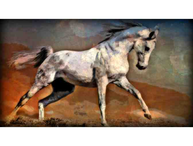 'Desert Trot' by WBK: MUSEUM QUALITY Ltd Edition, Signed and Numbered by the Artist