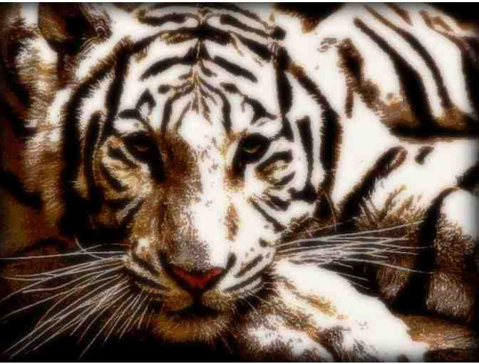 'White Bengal II' by WBK: A3 Giclee Print: 100% donated to WWF in memory of 'Cecil'