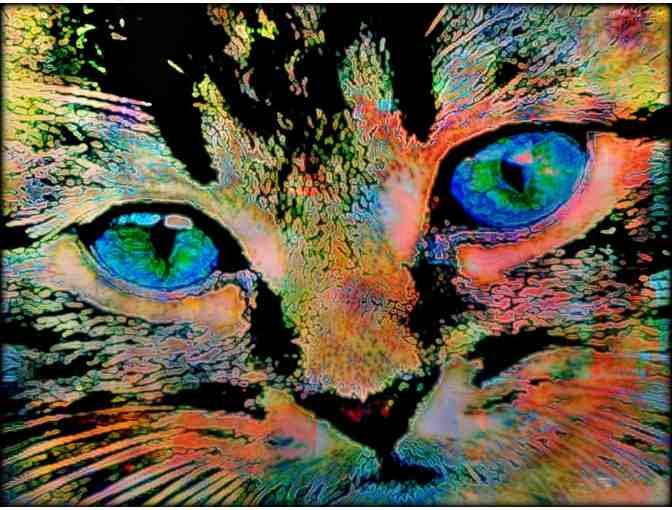 'Year of the Cat' by WBK: *** 9x12 Canvas!
