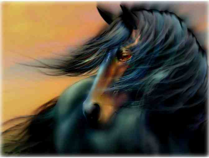 005: 'Blue Mane' by WBK: Limited Edition Museum Quality Print!