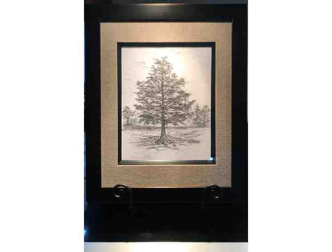 Cypress Tree, pencil drawing by Alexis White Delcambre - Photo 1