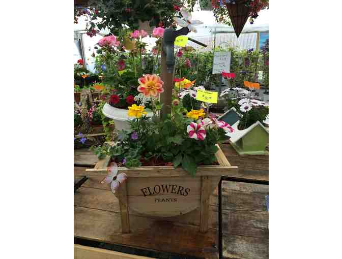 $50 Gift Certificate to Jaeschke's Fruits & Flowers - Photo 3