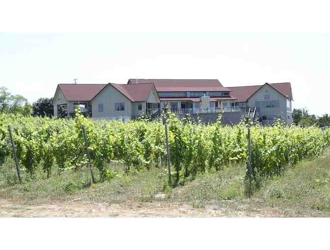 Private Tasting and Tour of Bonobo Winery for 4