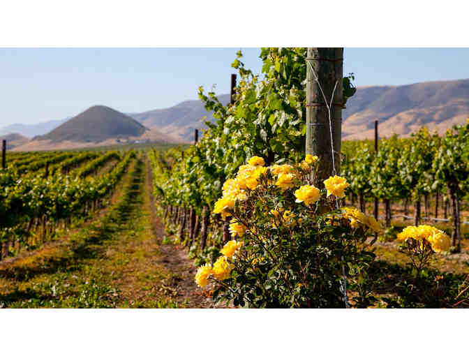 San Luis Obispo Wine Getaway - Madonna Inn, wine tasting and more!