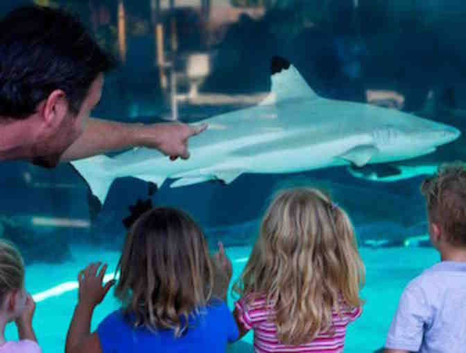 Aquarium of the Pacific in Long Beach - 2 Admission Passes