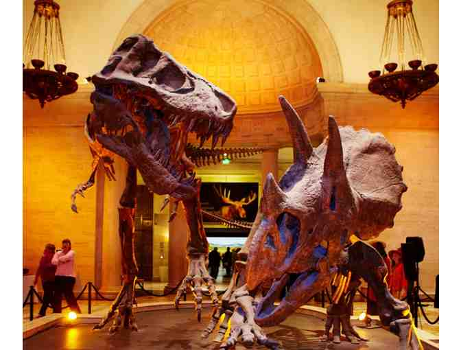 Natural History Museum of LA County - Admission for 4