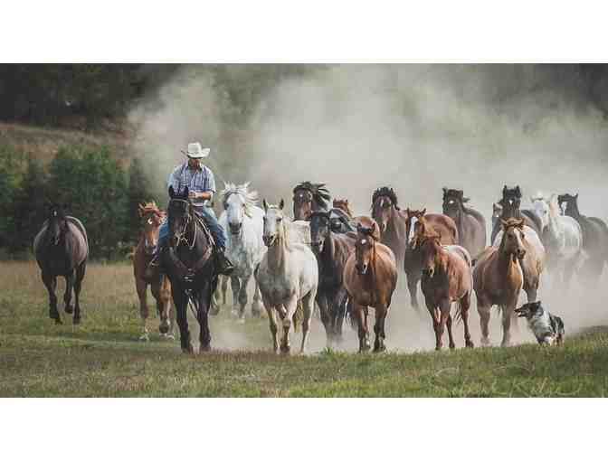 Idaho, Sandpoint - Western Pleasure Guest Ranch - 6 Night Package - Photo 12