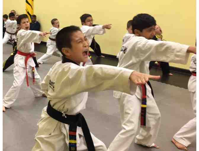 Tiger Kicks Tae Kwon Do - One Month of Classes and a Uniform