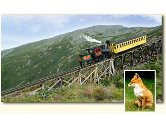 Nature, dinning and the Cog Railway!