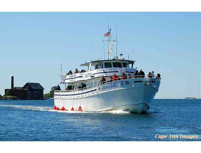 Cape Ann Whale Watch Tickets for Two - Photo 1