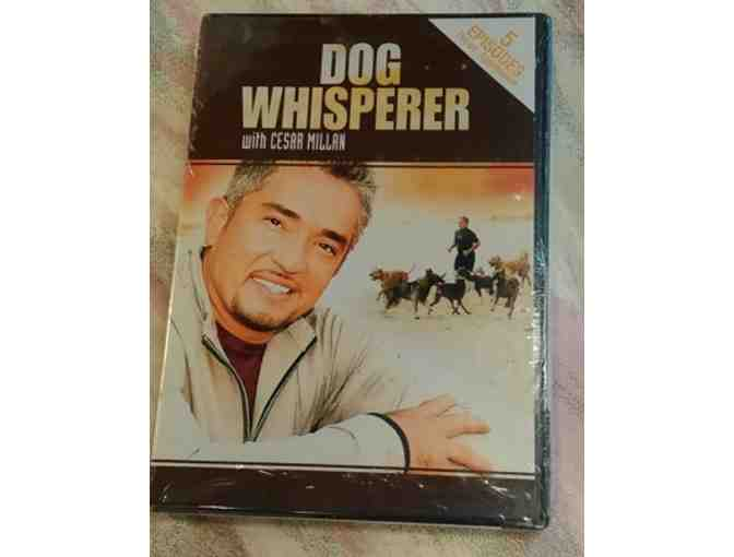Cesar Millan video