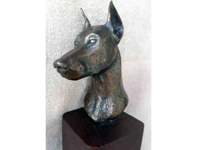 A Doberman Bust By Edwina Talley