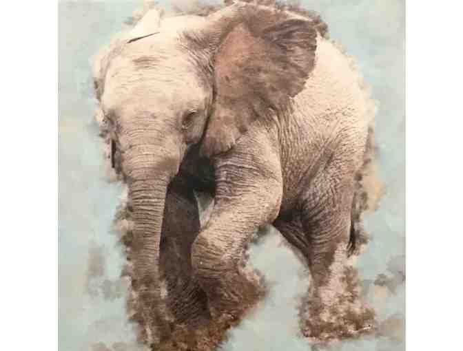 Baby African Elephant Print
