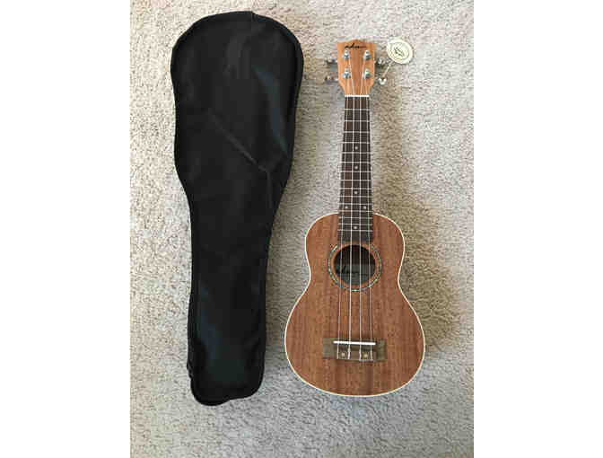 Concert Ukulele and Carry Bag
