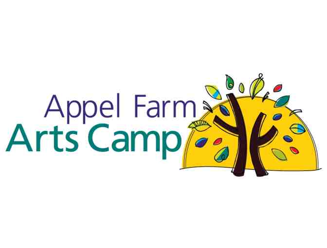 Appel Farm Arts Camp Gift Certificate