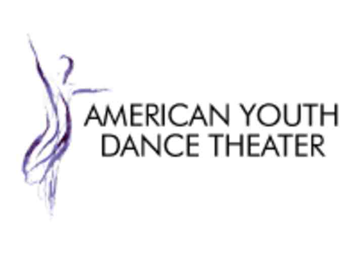 American Youth Dance Theater - $100 off summer program