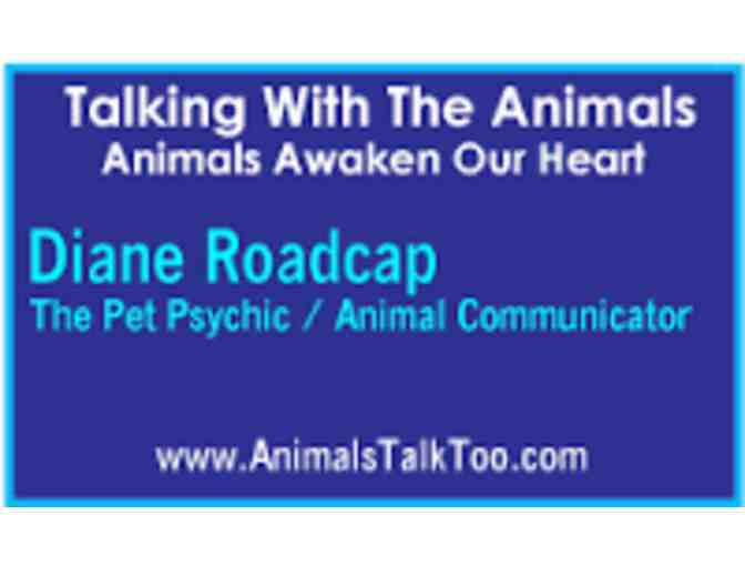 Diane Roadcap (Animal Communicator) 1 hour session!