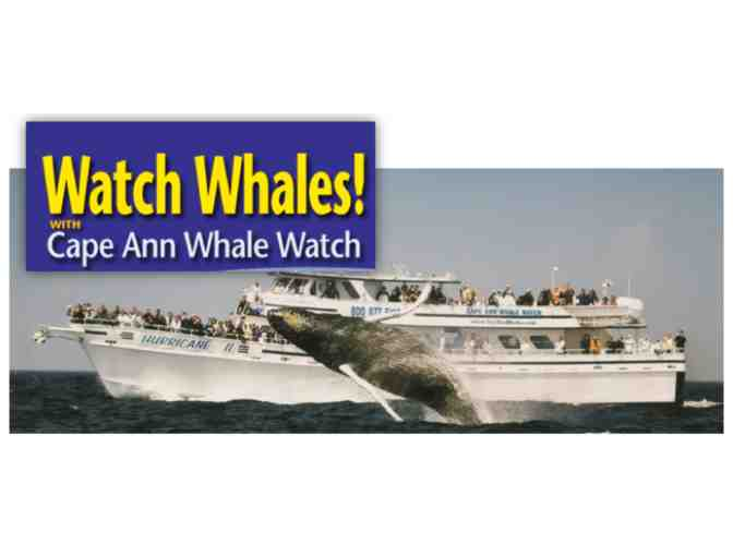 Cape Ann Whale Watch for 2