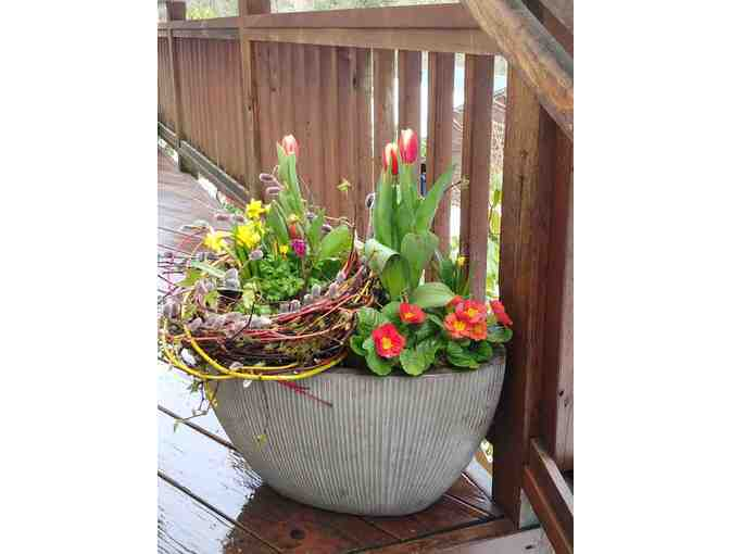 Fresh Potted Spring Arrangement in Ceramic Pot *pictured*