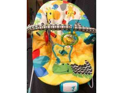 Infant Baby Bouncer