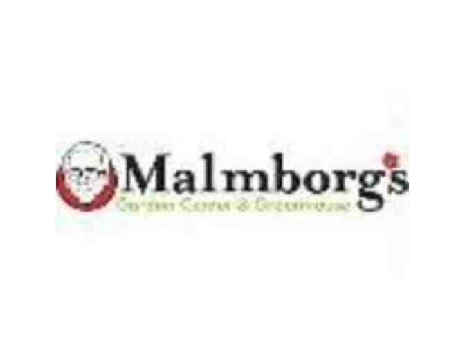 $25 Malmborg's Garden Center Gift Card