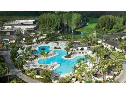 4 Nights at the Saddlebrook Resort in Tampa, Florida, for Up to 6 People