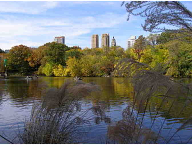 Guided Tour of Central Park