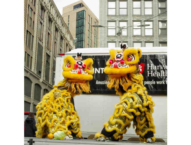 8 week Lion Dance Trial Class for Adult Asian Women