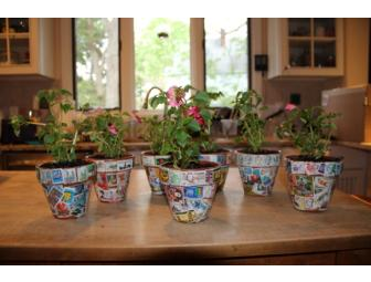 Grade 4 Mr. Levy/Ross's Class-2 Flowerpots