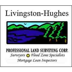 Livingston Hughes Surveyors