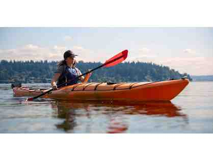 Guided paddle in the Great Bay Estuary