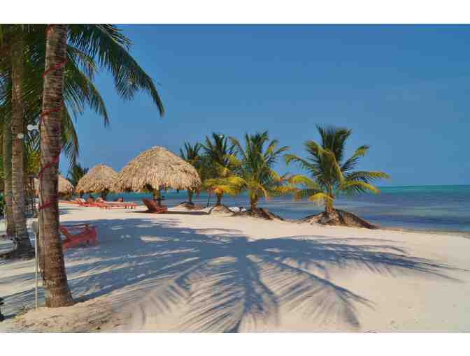 5087 - 8 Night Belize Adventure Pkg for 2, St. George's Caye Resort, Mariposa Jungle Lodge - Photo 5