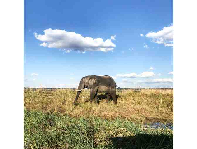 9 Day Southern Africa Land-and-Cruise Safari for 2, CroisiEurope Cruises