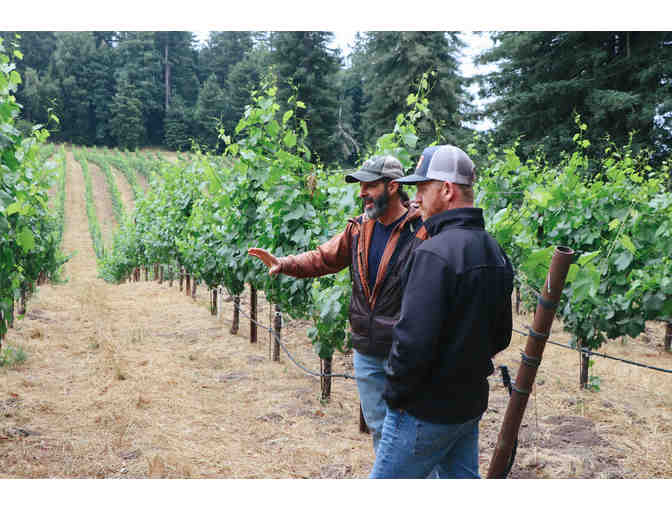 Zephyr Farms Vineyard Experience for Six, Red Car Wine, Sebastopol