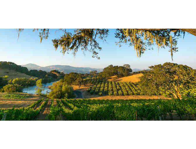 A Year of Wine Road Events for Two, Wine Road Northern Sonoma County, Healdsburg - Photo 4