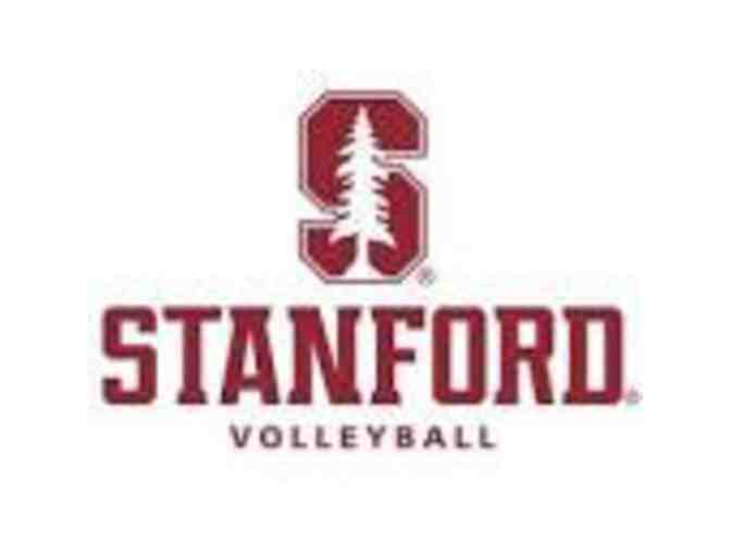 Stanford Volleyball Experience