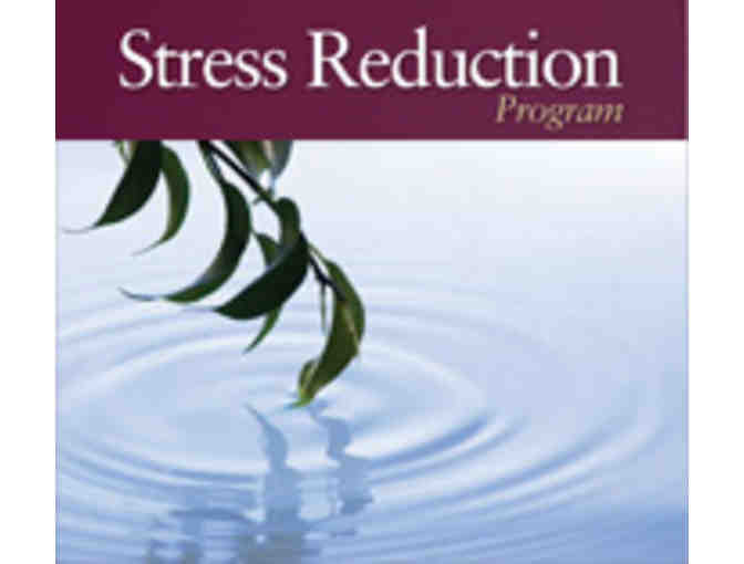 Center for Mindfulness: 2014 'Mindfulness Tools' Program