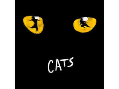 CATS, the Musical, in Boston - two center orchestra tickets