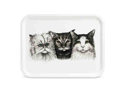 ABBOTT COLLECTION LARGE 3 CAT TRAY